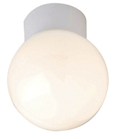 Bathroom Light Ceiling Globe 100w Robus R100SB