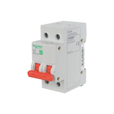 Schneider Easy9 Main Switches